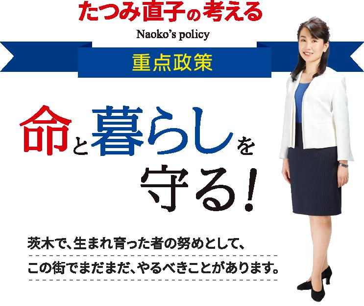 茨木市議会議員 たつみ直子 政策 スマホ